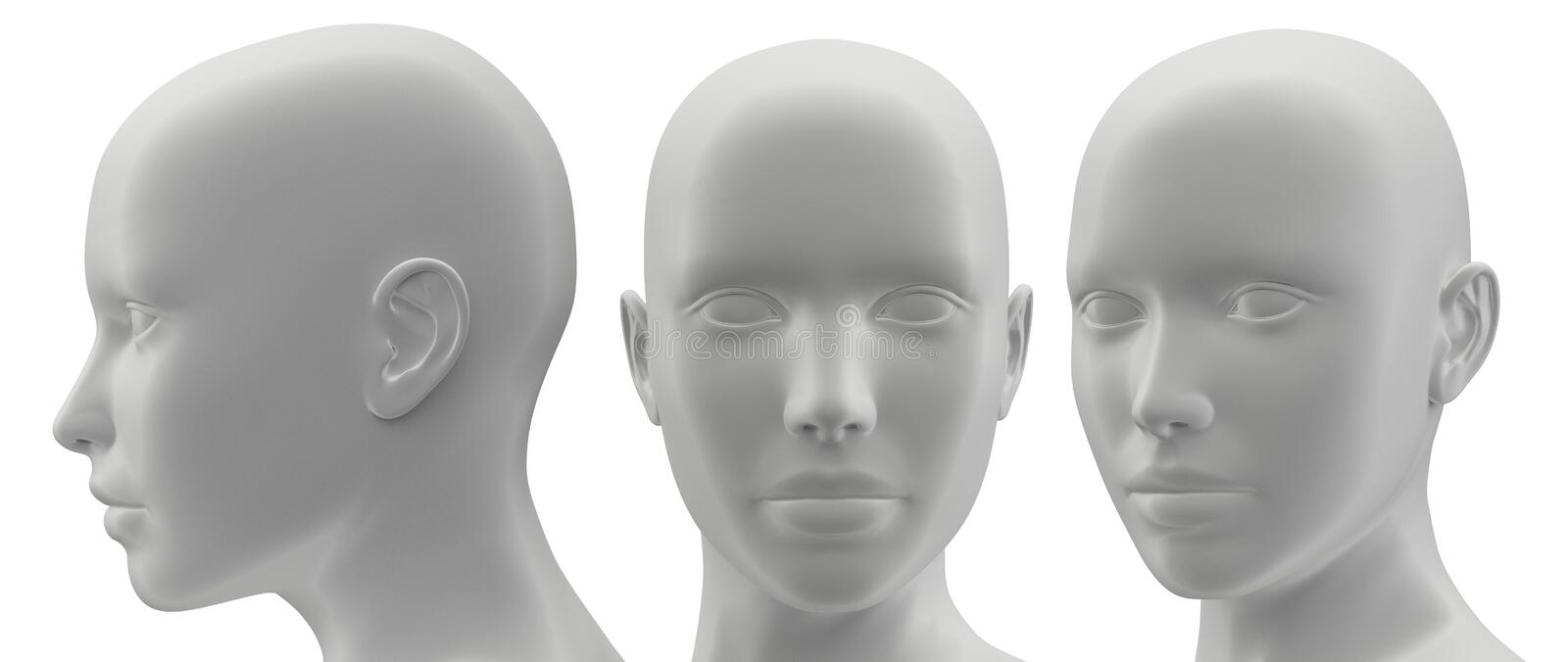 3d rendering illustration of face human collection. Body, male, system, anatomy, health, white, full, medical, science, isolated, lymph, blue, background royalty free illustration