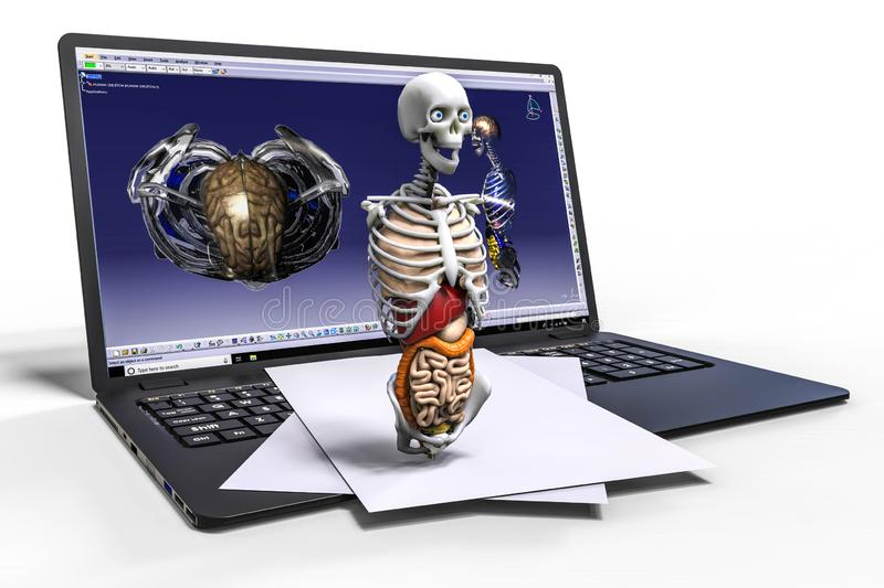 3D rendering representing a computer aided design of a human skeleton royalty free illustration