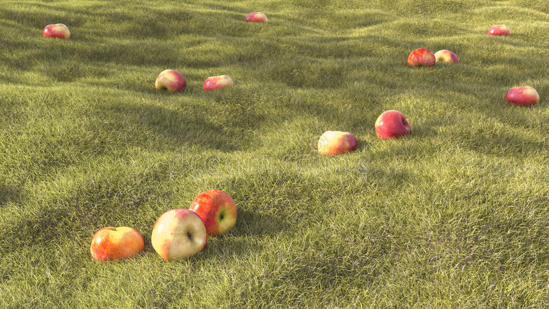 3D rendering realistic grass field summer with apple royalty free illustration
