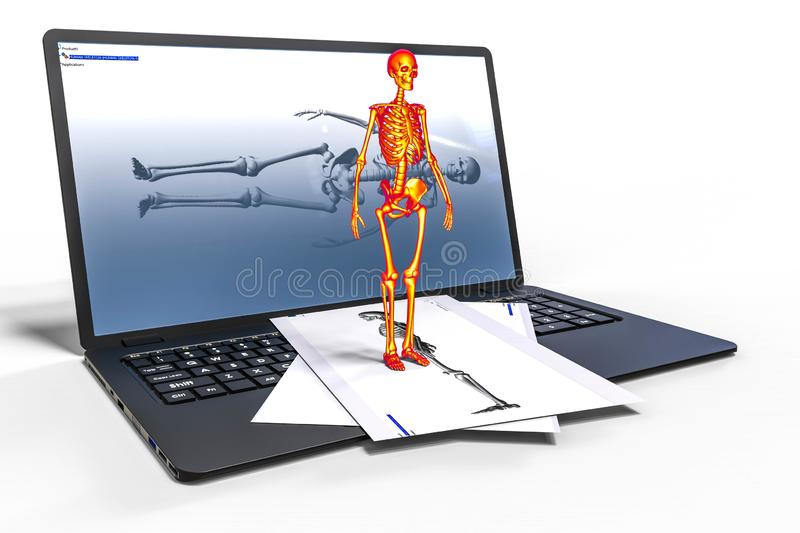 3D rendering representing a computer aided design of a human skeleton vector illustration
