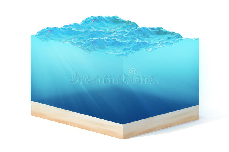3d rendering of section of clean ocean water with bottom under water, isolated on white background. royalty free stock photos