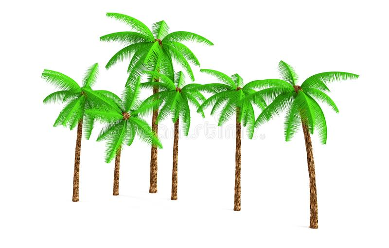 3D rendering - A tall coconut tree isolated over a white background use for natural poster or wallpaper design, 3D illustration royalty free illustration