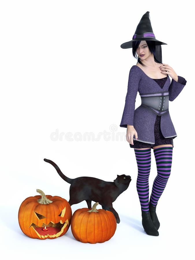 3D rendering of witch with black cat and pumpkins. 3D rendering of a cute pin-up styled witch dressed in purple clothes looking at a black cat. Two big pumpkins stock illustration
