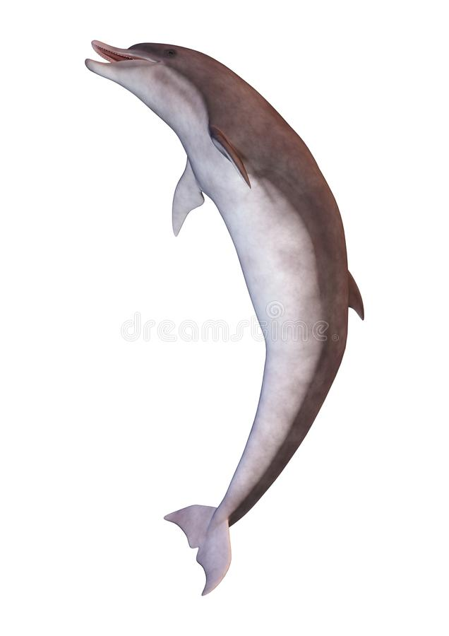 3D renderingu delfin na bielu ilustracji