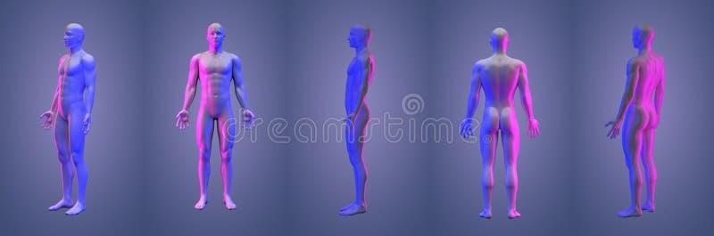 3d renderingu ilustracja istota ludzka royalty ilustracja