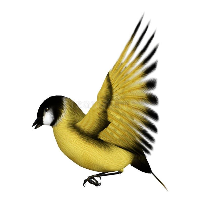 3D renderingu ptak śpiewający Goldflinch na bielu ilustracja wektor