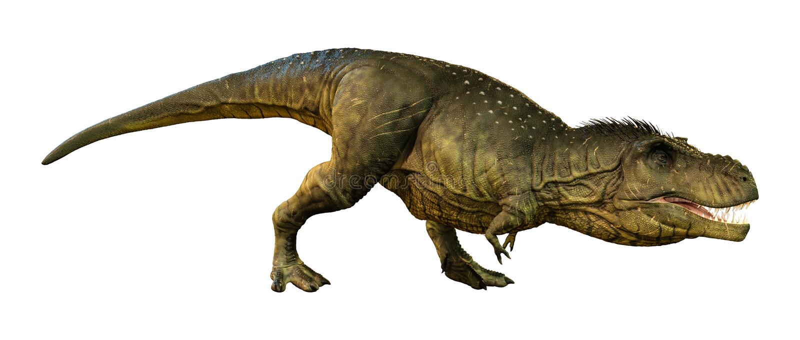 3D renderingu Tyrannosaurus Rex na bielu ilustracja wektor