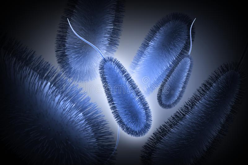 3d rendeu as bactérias de E coli isoladas no fundo branco ilustração stock