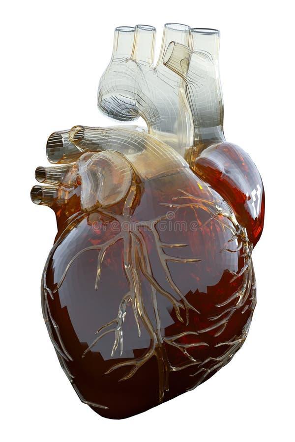 3d rendeu a ilustração medicamente exata de um coração artificial ilustração royalty free