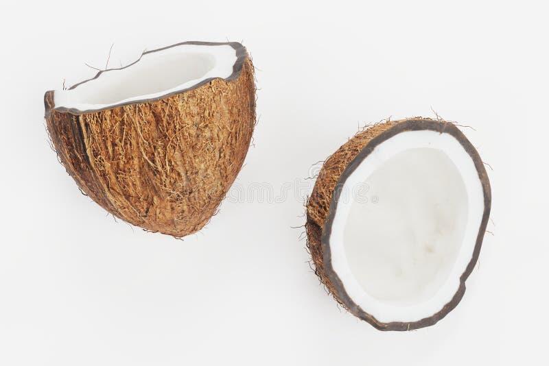 3d rendono della noce di cocco illustrazione di stock