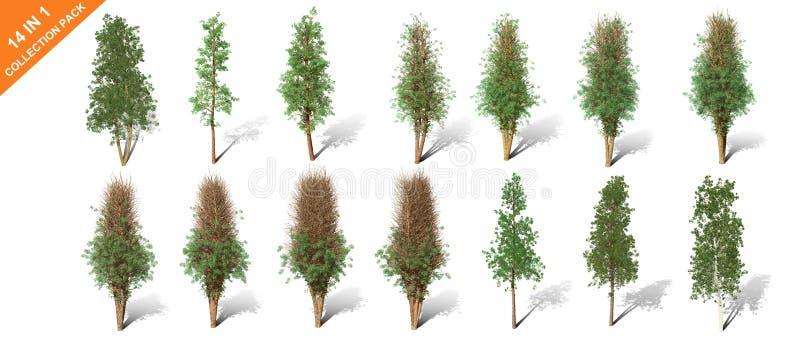 3D rendu - 14 dans 1 collection d'arbres d'isolement au-dessus d'un fond blanc illustration libre de droits