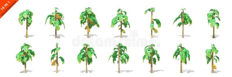3D rendu - 14 dans 1 collection de bananiers d'isolement au-dessus d'un fond blanc illustration stock