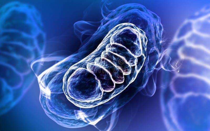 3d a rendu l'illustration de Digital des mitochondries à l'arrière-plan de couleur illustration stock