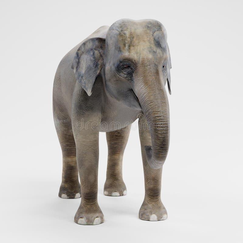 3D rinden del elefante asiático - hembra stock de ilustración