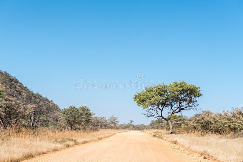 D2908-road между B8-road и метеоритом Hoba стоковое фото rf