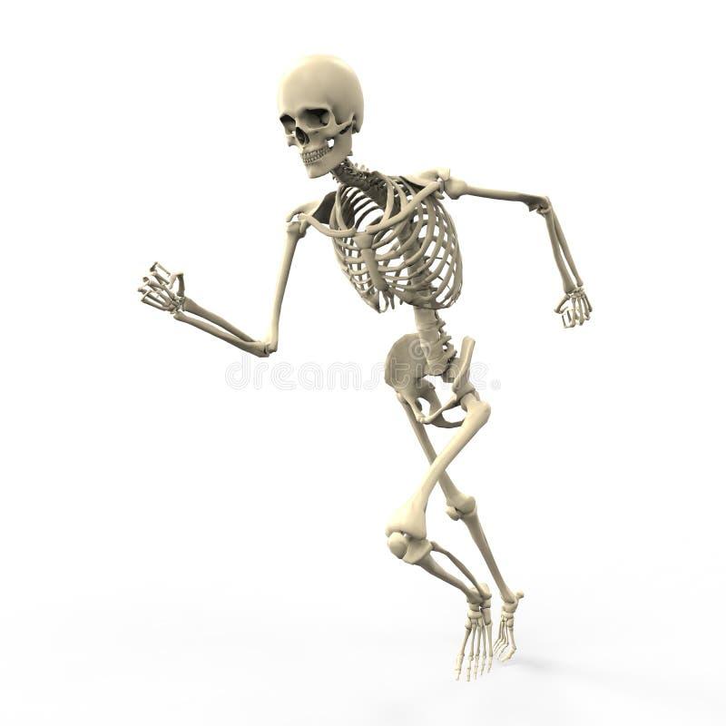 3D running skeleton royalty free illustration