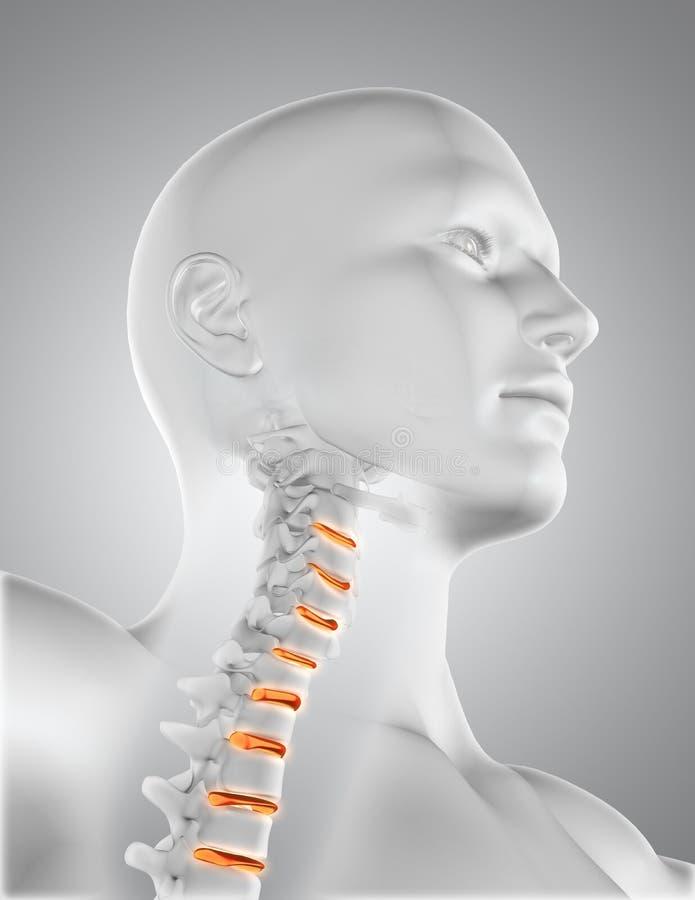 3D Se Cierran Para Arriba De La Figura Médica Masculina Con El ...