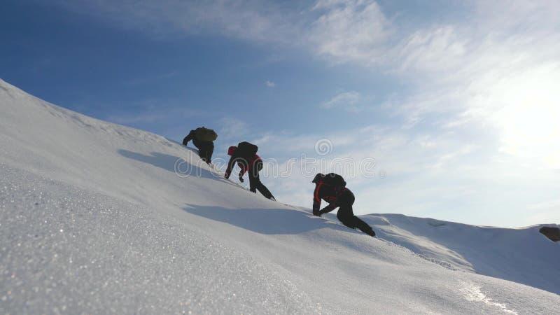 D?sir de travail d'?quipe de gagner Les grimpeurs s'?l?vent jusqu'au dessus d'une montagne neigeuse en Alaska voyageurs dans l'Ar images libres de droits