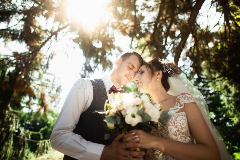 D?a soleado hermoso Pares de la boda que presentan en el fondo de la naturaleza imagen de archivo
