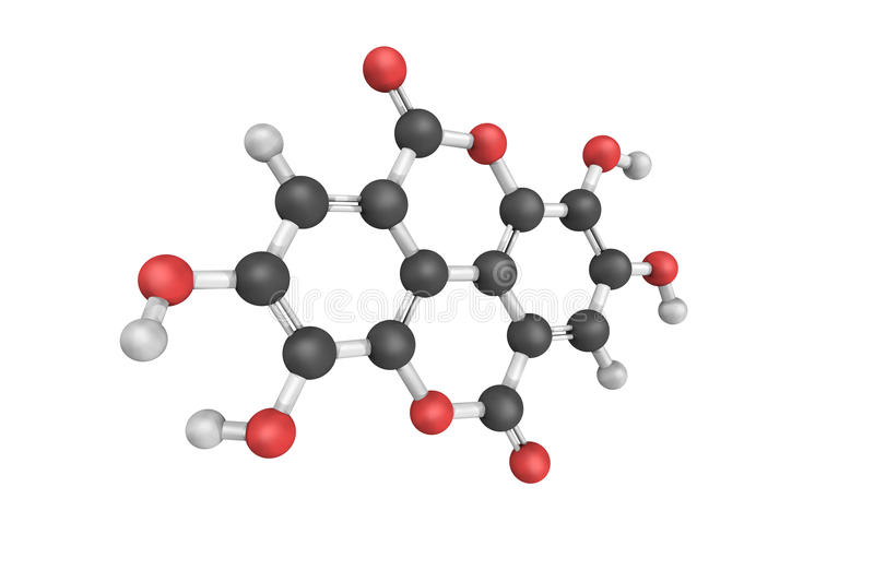 3d structure of Ellagic acid, a natural phenol antioxidant. Found in numerous fruits and vegetables. The antiproliferative and antioxidant properties have vector illustration