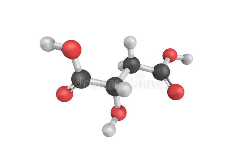 3d structure of Malic acid, a dicarboxylic acid. That is made by all living organisms, contributes to the pleasantly sour taste of fruits, and is used as a food vector illustration