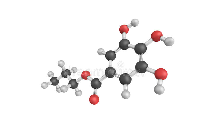3d structure of Propyl gallate, an ester formed by the condensation of gallic acid and propanol. Since 1948, this antioxidant has. Been added to foods vector illustration