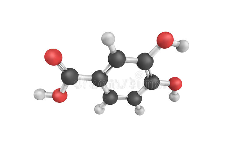 3d structure of Protocatechuic acid, a dihydroxybenzoic acid. It is a major metabolite of antioxidant polyphenols found in green tea stock illustration