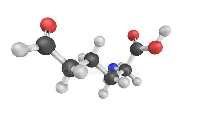 3d structuur van Allysine, een derivaat van lysine, in PR wordt gebruikt dat stock afbeeldingen