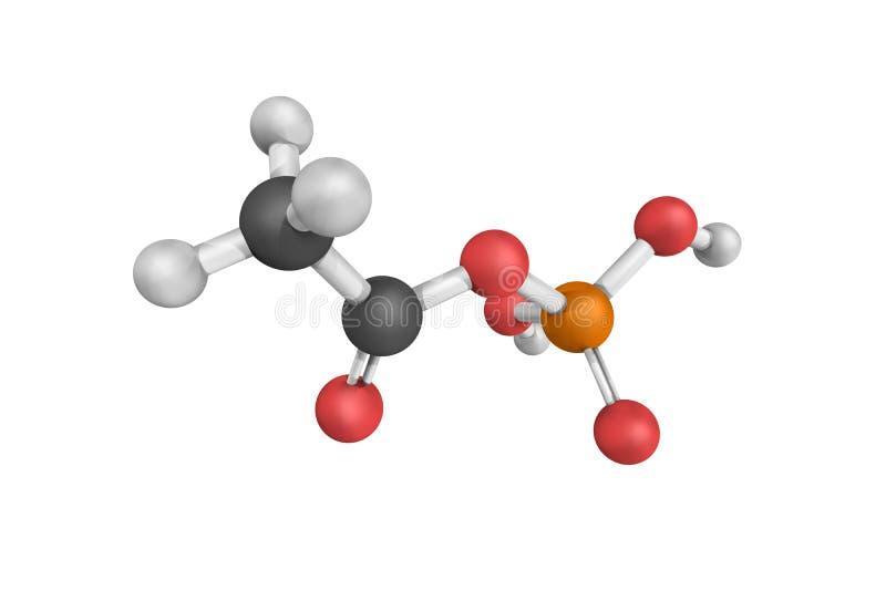 3d struttura di Acetylphosphate, un enzima che catalizza il ch fotografie stock