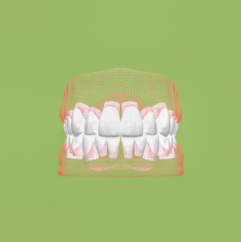 3D teeth close up illustration. royalty free stock images
