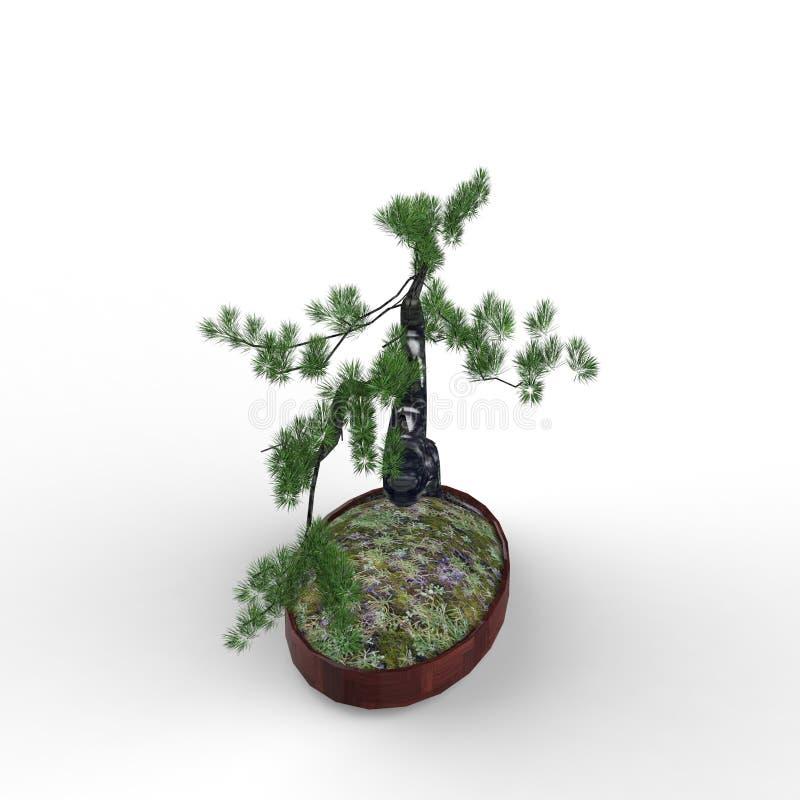 3d teruggevend een bonsai door een mixerhulpmiddel te gebruiken dat wordt gecreeerd stock illustratie