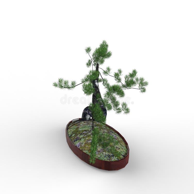 3d teruggevend een bonsai door een mixerhulpmiddel te gebruiken dat wordt gecreeerd Realist 3d bonsai vector illustratie