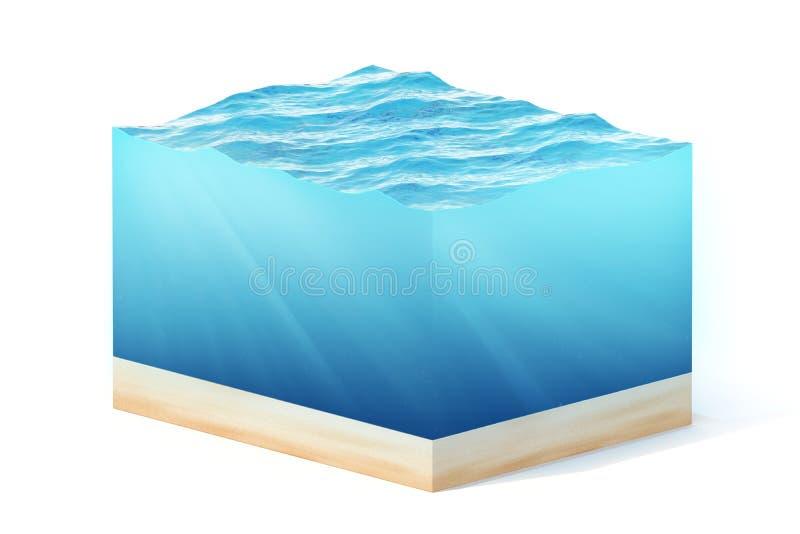 3d teruggevende die illustratie van dwarsdoorsnede van waterkubus op wit met schaduw wordt geïsoleerd stock illustratie