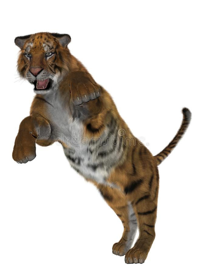 3D tiger royalty free stock image