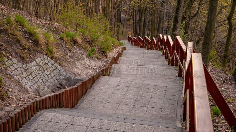 d?ugie schody Pacholek wzgórze w Gdańskim Oliwie Kategoria Krajobraz obraz royalty free