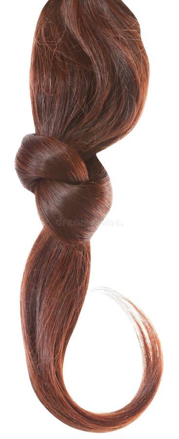 D'une chevelure brun de femmes images libres de droits