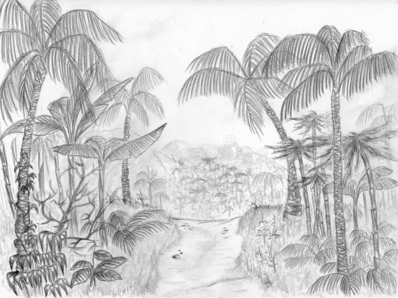Download Dżungli droga ilustracji. Obraz złożonej z junior, fernandez - 7515854