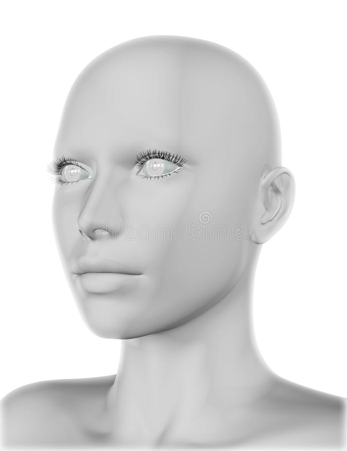 3D vrouwelijk gezicht stock illustratie