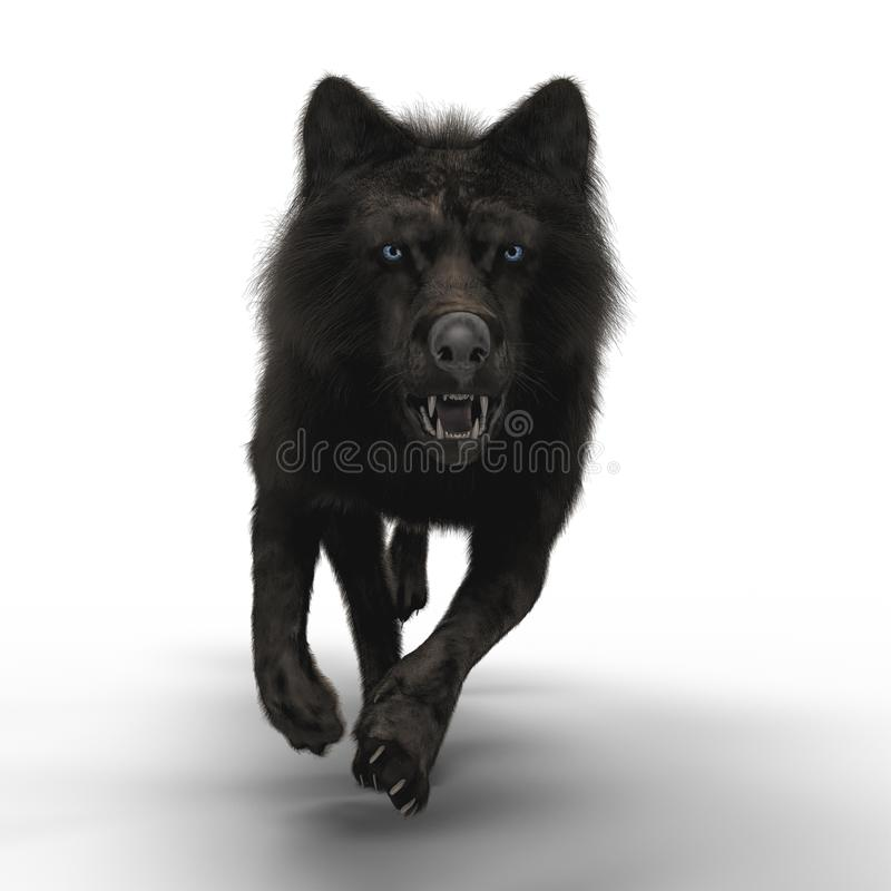 3D Wolf Running de gruñido libre illustration