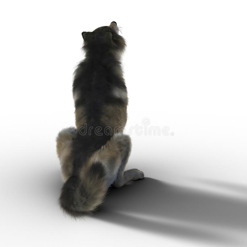 3D Wolf Sitting Isolated stock illustratie