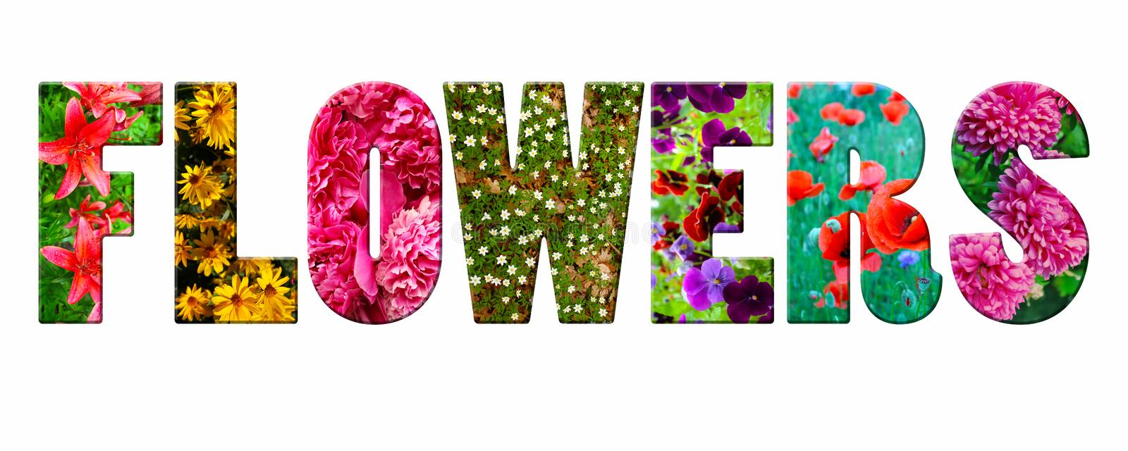3D the word `flowers` from the garden flowers. On white royalty free stock image