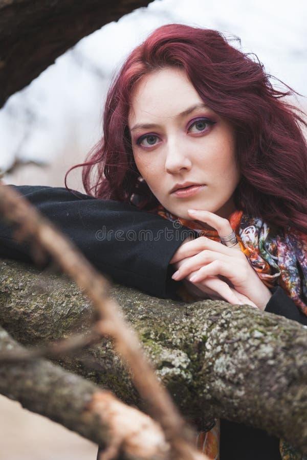 D'yeux bleus maigre d'otdoor de portrait de jeune femme assez l'hiver de branche d'arbre ou le jour froid d'automne photos libres de droits