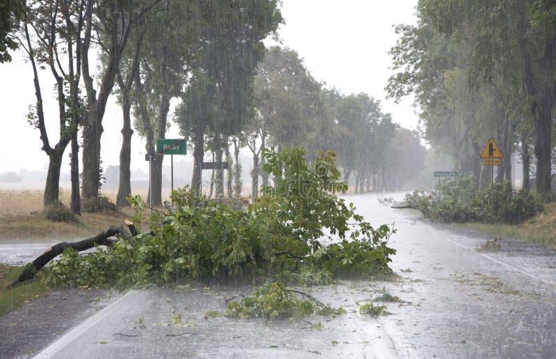 Daño de la tormenta del viento imágenes de archivo libres de regalías