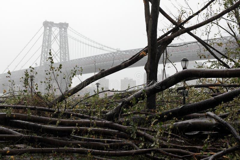 Daño de NYC - huracán Sandy fotos de archivo