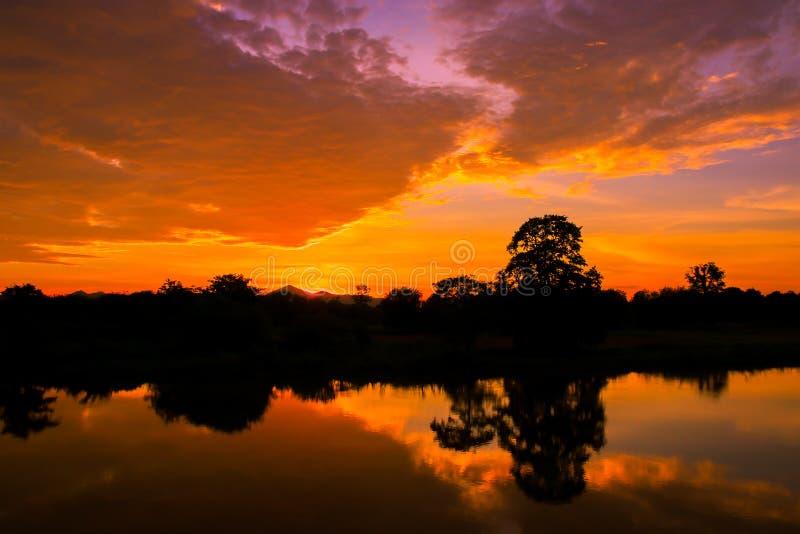 Da árvore colorida bonita da silhueta da paisagem do por do sol e da luz favoravelmente rio reflexo da água no tempo do crepúscul imagens de stock royalty free
