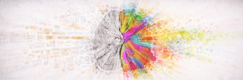 Da esquerda ? direita conceito do c?rebro humano, ilustra??o textured Parte esquerda e direita criativa do c?rebro humano, emotia ilustração stock