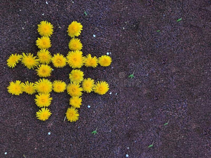 Da etiqueta viral dos meios da rede da Web do cargo de Hashtag conceito publicando em blogs da estratégia do Web site do blogue - foto de stock royalty free