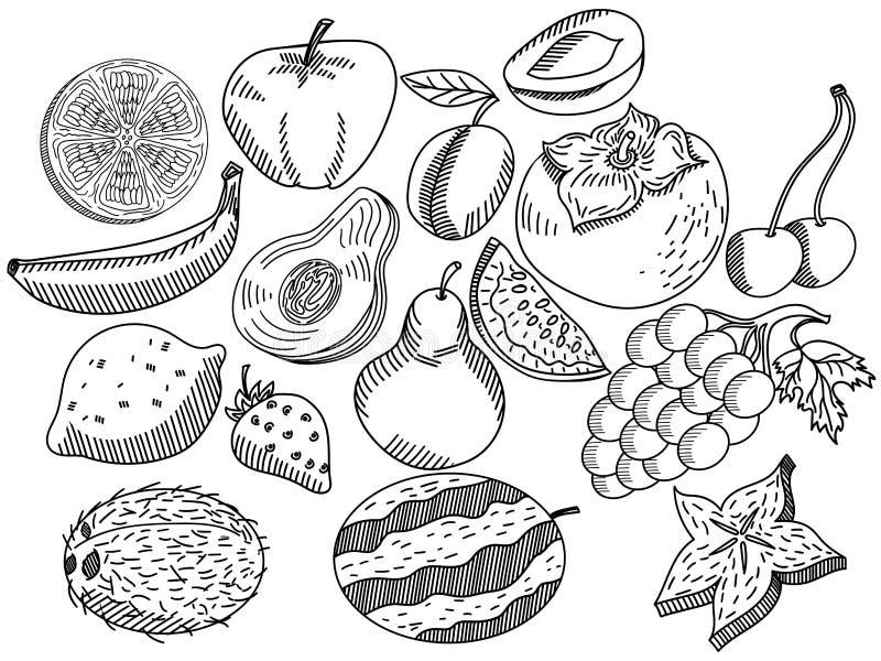 Da fruto el vector del libro de colorear para los adultos ilustración del vector