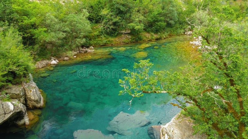 Da garganta tranquilo do rio de Mrtvica beleza selvagem de Montenegro Lan da natureza imagem de stock