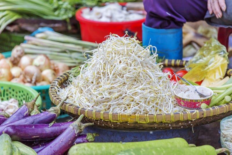 Da Lat market, Da Lat city, Lam province, Vietnam. Bean sprouts in vegetables stall in Da Lat market, Da Lat city, Lam province, Vietnam. Da Lat is called the stock image